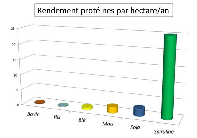 rendement-proteine-hectare_page_001