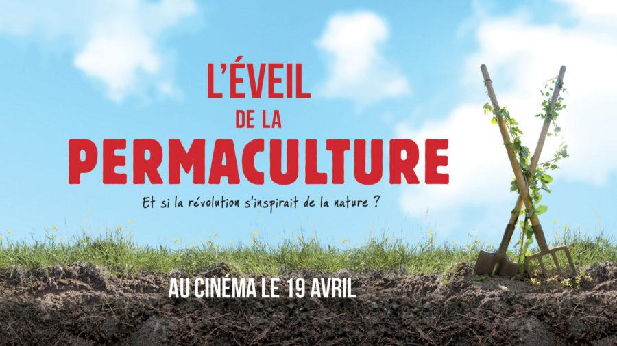 leveil_news_nouveau_site