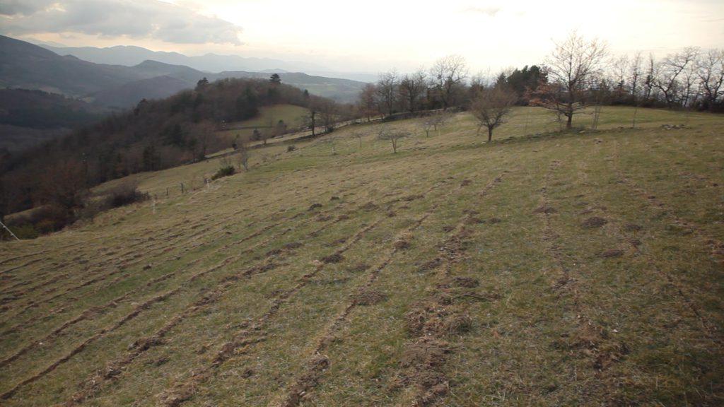 Les sillons formés par la charrue Yeomans ponctuent le paysage de la ferme des Cloutets.